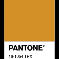 16-1054-TPX